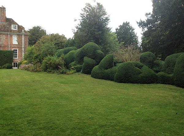 Hedge maintenance in Cheriton
