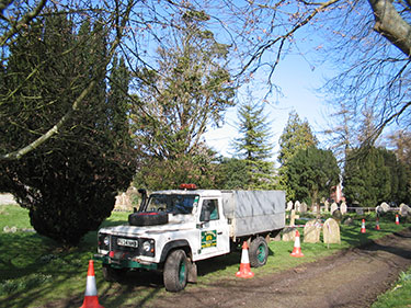 Tree surgeon tree felling in church yard, Hampshire