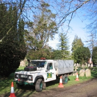 Tree felling in a Hampshire churchyard