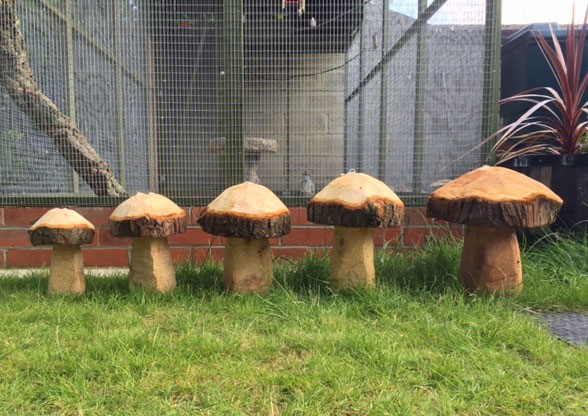 Hand carved wooden mushrooms - part of our Forestry Features range
