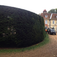 Hedge maintenance in West Meon