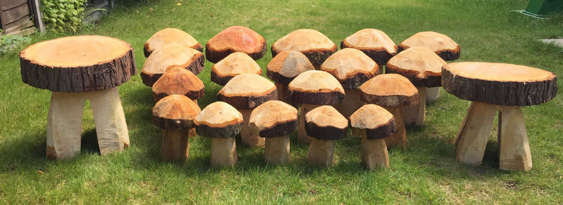 Wood carvings mushrooms Hampshire